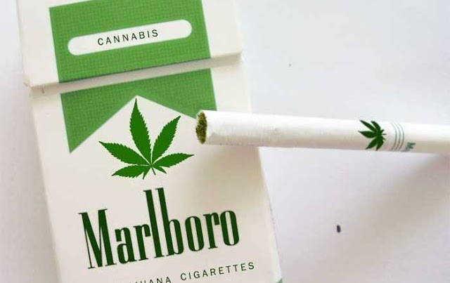 Image result for State Proposes Bold Law to Treat Pot Like Tobacco And Expunge All Records of Marijuana 'Crimes'
